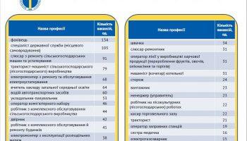 За якими професіями кількість вакансій на ринку праці Кіровоградщини найбільша?